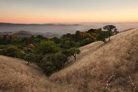 Sunset over hilly California meadow