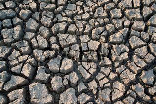 Shrinkage cracks - very arid land