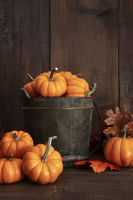 Small pumpkins in wooden bucket on table
