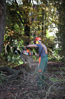 Ein Holzfäller mit Kettensäge -