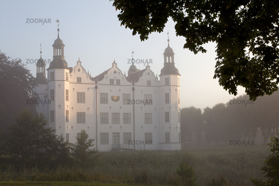 Ahrensburger castle with fog