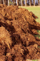 manure for organic farming