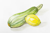 Small green zucchini squash and a big yellow lemon