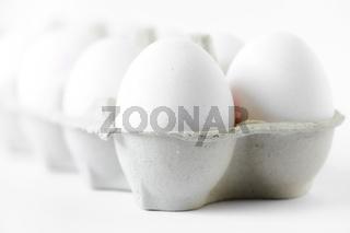 10 Eier im Transportkarton