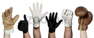 concept of different gloves