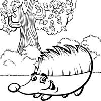hedgehog cartoon for coloring book
