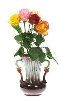 Roses in a vase.