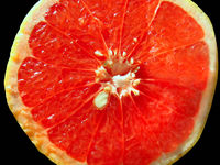 close-up of juicy red orange