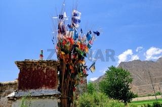 Leben im Einklang mit Natur und Religion in Tibet China