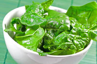 raw spinach leaves in a white bowl with green  bac