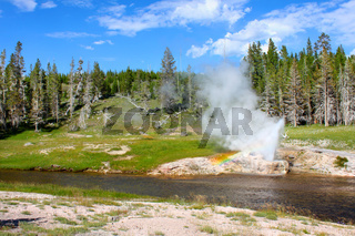 Riverside Geyser Yellowstone National Park