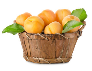 Apricots in a basket isolated