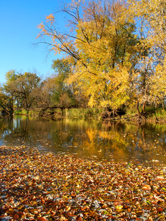 Kishwaukee River Autumn Scenery