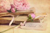 Peony flowers with vintage papers