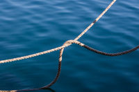 thick rope in water