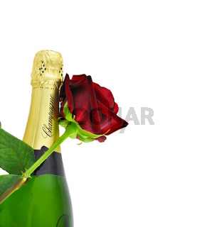 Champagne and a red rose