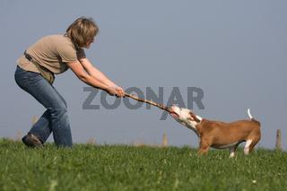 Frau und Hund messen ihre Kräfte