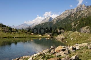 Alpine Landschaft mit See und Kühen, Wallis