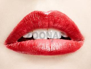 lips zone makeup
