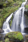 idyllic Triberg Waterfalls