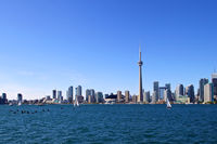 Geese and sailboats in Toronto