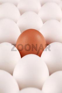 Einsames Ei