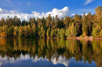 autumnal lake near the forest