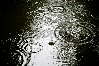 circle in puddle from rain drops