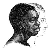 Racism, types of Caucasian and dark-skinned faces, people pictur