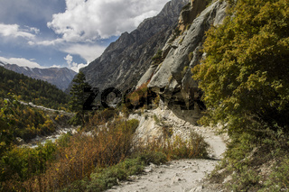 Pathway in the Bhagirathi valley