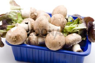 Champignons mit Salat