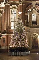 Weihnachtsbaum vor dem Michel