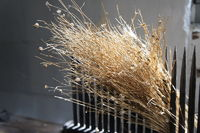 flax, historical exhibition