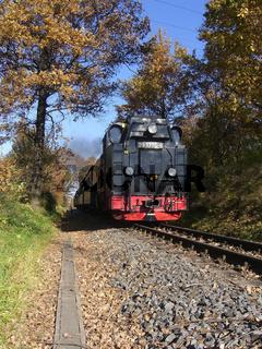 Dampflokzug im Herbst