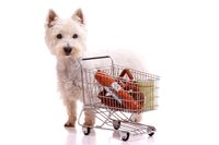 Hund mit Einkaufswagen stehend