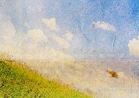 summer field on grunge background