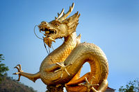 Golden dragon over blue sky. Phuket