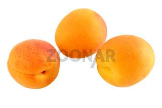 Drei reife Aprikosen - freigestellt