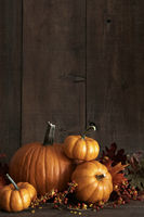 Group of gourds and pumpkin against a wood