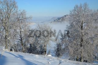 Winterlandschaft auf der Schwäbischen Alb