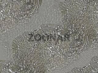 Wasser II