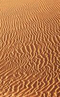 Dunes landscape, Maspalomas, Gran Canaria