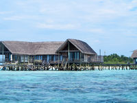 Sea facing cottages on maldive island