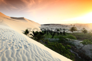 desert sand under blue sunny sky