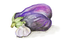 blue eggplant and garlic isolated