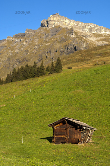 Traditional storage facility, Switzerland