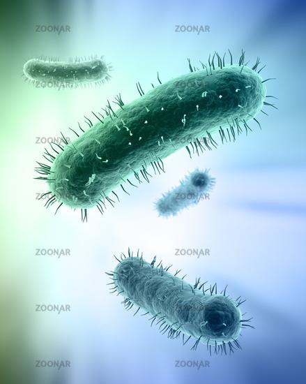Scientific illustration of bacteria