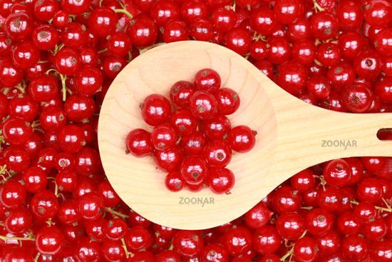 Frisch gepflückte rote Johannisbeeren