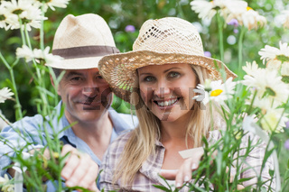 Smiling couple looking through daisies