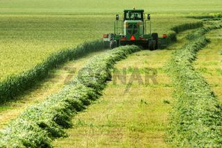 Rural field.